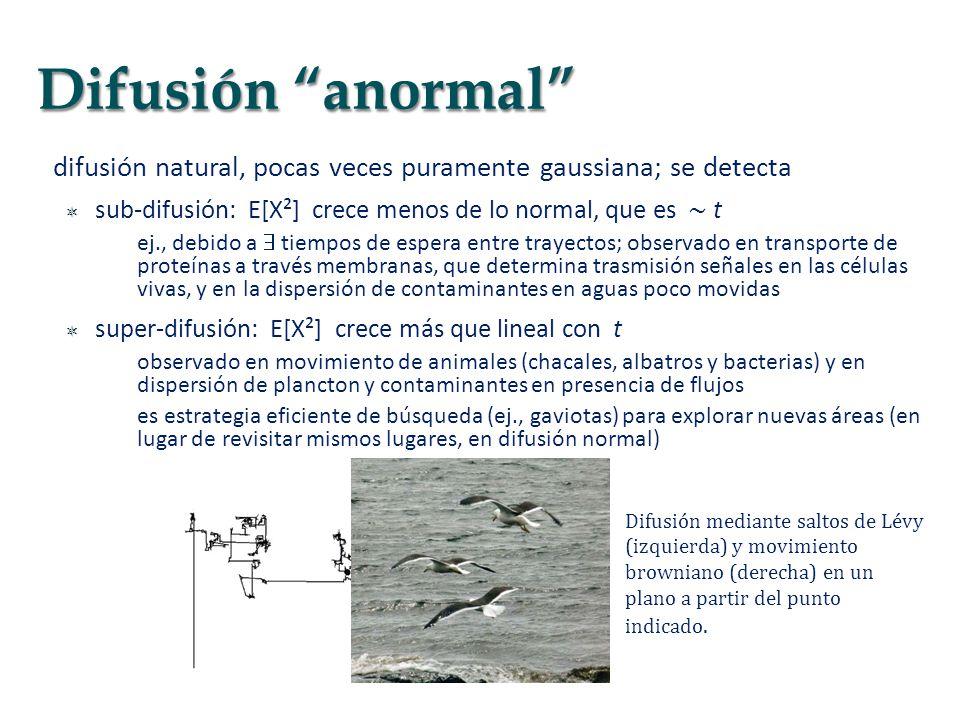 Difusión anormal difusión natural, pocas veces puramente gaussiana; se detecta. sub-difusión: E[X²] crece menos de lo normal, que es ∼ t.